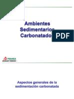 244269539 4 Ambientes Carbonatados Pptx