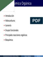 rOrg.pdf