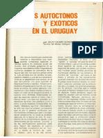 Venados de Uruguay