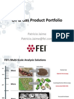 Oil & Gas FEI Product Portfolio