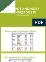 Cultivos andinos y andinizados IV.pptx