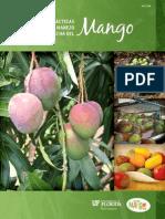 mango, sistemas de calidad