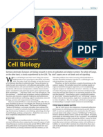 cell biology (publication analysis 1996-2007)