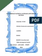 UNIVERSIDAD NACIONAL SANTIAGO ANTUNEZ DE MAYOLO.docx
