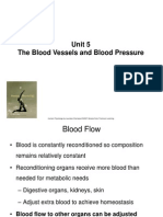 Unit 5 Blood Pressure