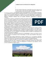 PELIGROS AMBIENTALES NATURALES EN AREQUIPA.docx