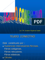 TEJIDO  CONECTIVO II.ppt