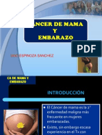 cancerdemamayembarazo-120818220052-phpapp02