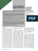 fibroma ameloblástico a fibrosarcoma amleoblastico