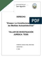 Constitucionalidad de Las Medidas Autosatisfactivas