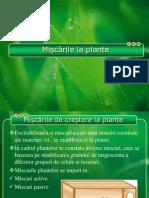 Miscarile La Plante ,