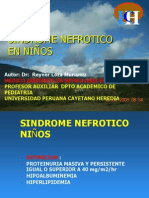 sindrome nefrotico11
