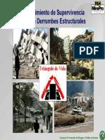 Tringulo de Vida.pdf
