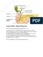 Pancreas how it works.doc