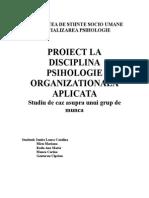 Proiect psihologie organizationala