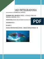 ACTIVIDAD INTEGRADORA Equipo Mixo, Informatica