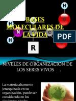 Unidad II, Pres 1. Bases Moleculares
