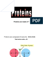IBT01 L2 Proteins
