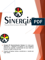 Portifólio de Coaching - Sinergia MT