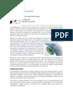 Avances en Oftalmologia 2014