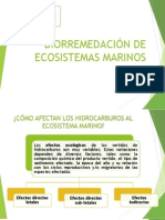 Biorremedación de Ecosistemas Marinos