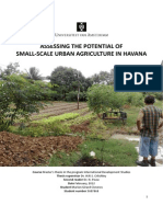 Small-scale Urban Agriculture in Havana