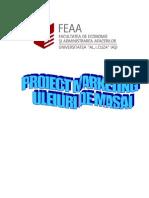 Uleiuri de Masaj-Proiect marketing