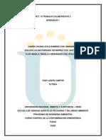ACT_10.aporte_Borrador_1.docx