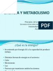 Introduccion a la Biologia Teorico sobre energia y metabolismo