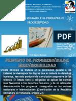 Presentacion Principio de Progresividad