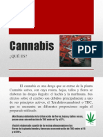 Cannabis Presentacion