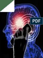 Hardell, Lennart - Das Hirntumorrisiko im Zusammenhang mit der Nutzung von Mobil- und Schnurlostelefonen