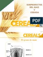 Subproductos de Almidon y Maiz