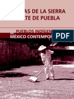 nahuas_sierra_norte_puebla.pdf