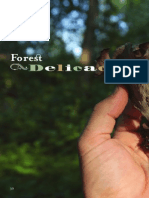 Forest Delicacies