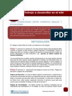 C9_013_TEMA A DESARROLLAR EN EL WIKI.pdf
