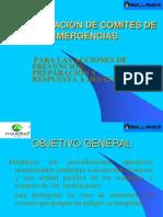 COMITES DE EMERGENCIAS EQUIDAD.ppt