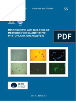 Phytoplancton