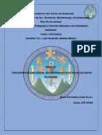 Univ Ensayo 2 Info