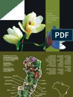 Catálago de Plantas Ornamentais