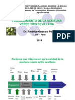 10. Aceituna  fermentada (1).pdf
