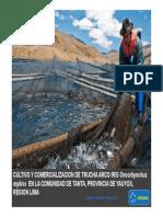 PDF 61752 Celepsa Cultivo y Comercializacion de Truchas Arco Iris