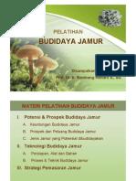 Budidya-jamur