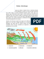 Ciclo Agua Practica (1)