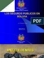 Seguro Universal Materno Infantil SUMI Bolivia M Flores