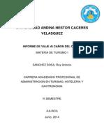 Informe Cañon Del Colca