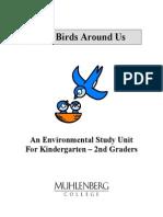 Birds 17