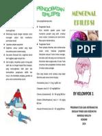 Leaflet Epilepsi 1