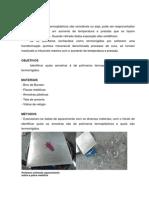 Relatório sobre polimeros Termoplásticos e Termorrígidos