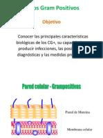 Cocos Gram Positivosoct13